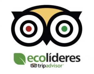 20160408120623 tripadvisor web 300x238 - ¿Cómo detectar un hotel ecológico?