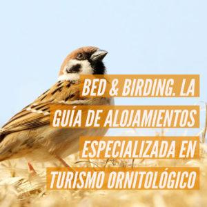 bid and birding 300x300 - Inicio