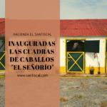 """caballo hotel hacienda el santiscal 150x150 - Inauguradas las Cuadras de caballos """"El Señorío"""""""
