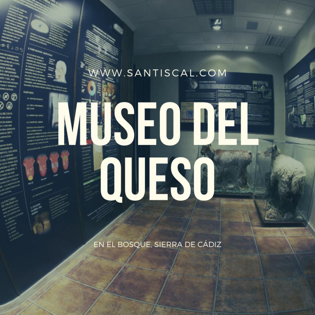 Museo del queso 1024x1024 - Museo del queso de El Bosque